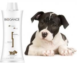 Biogance Protein Plus Shampoo - Sampon gyakori használatra kutyák és macskák részére 4 féle kiszerelésben