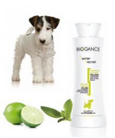 Biogance Terrier Secret Shampoo - Sampon drótszőrű kutyák részére 4 féle kiszerelésben