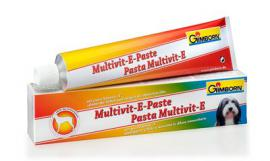 Gimborn Multivitamin-E paszta 50 gr, 220 gr