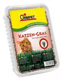 Gimpet  Katzen Gras macskafű
