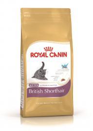 Royal Canin Feline British Shorthair Kitten száraz táp Brit rövidszőrű kölyökcicáknak, 1-12 hónapos korig